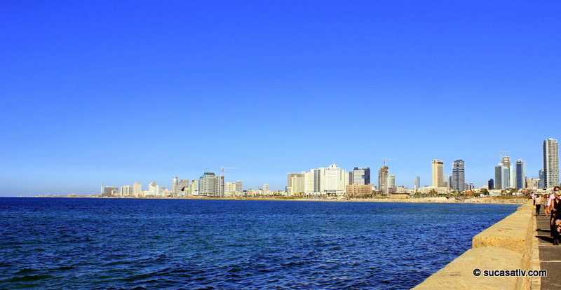 The Tel Aviv skyline and shoreline